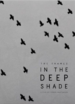 The Frames: In The Deep Shade dvd cover art birds flying in the sky